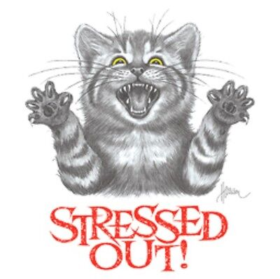 cat shirt, Stressed Out Cat Shirt!  Funny Cat T-Shirt, Ladies Shirts, Small - 5X