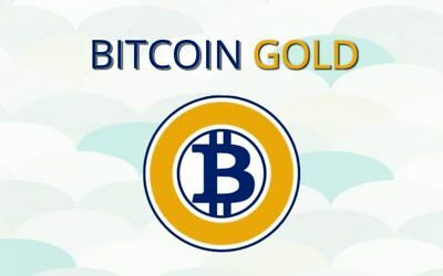 You are buying BTG Bitcoin Gold 1Hour Mining Contract GPU  (0.1 BTG) Future Here