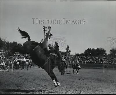 1966 Press Photo Champion Old West Cowboys during the Pendleton Round Up Rodeo