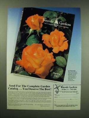 1987 Wayside Gardens Ad - Send for the complete garden catalog you deserve