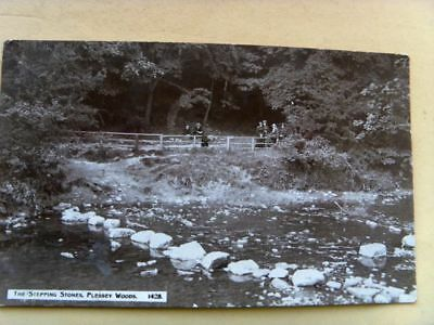 ANTIQUE EARLY 20th CENTURY POSTCARD of THE STEPPING STONES PLESSEY WOOD N'UMBERL