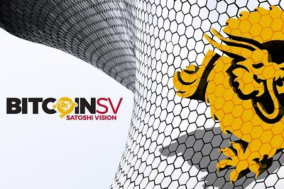 Mining Contract 3 Hours (Bitcoin SV) Processing Speed (12.5 TH/s) 0.01 BSV
