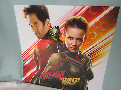 Movie Poster Ant-Man and the Wasp Vinyl Redbox Double Sided Paul Rudd 2018