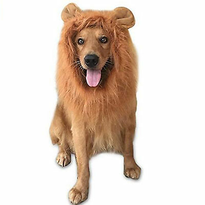 Pet Costume Hairpiece Lion Wig with Ears DOG Festival Party Fancy Hair Dress Up