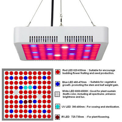 Professional 300W LED Grow Light Full Spectrum Panel Lamp for Hydroponic Plant