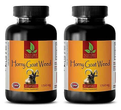 horny goat weed herbal - HORNY GOAT WEED 1560MG 2B - testosterone booster high