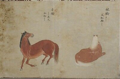 Fine antique 18th / 19th century Chinese painting ink and colour - Horses - #2