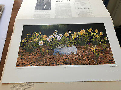 Bob Timberlake Early Jonquils Limited Edition Signed Numbered Print Unframed