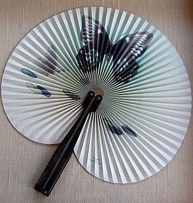 """Antique  """"asian"""" Hand Fan, Professionally Framed!!! !!!"""