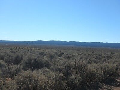 Live Completely Off Grid On Half Acre In Taos NM!