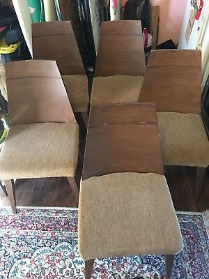 Set of 5 Mid Century Modern Dining chairs, 1950's