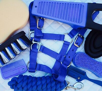 Horse 9 Piece Starter Kit ~ Blue With Halter & Lead Rope & Grooming Set
