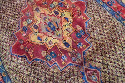 5 x 10 Plush Vintage Authentic Persian Tribal Koliayi Hand Knotted Wool Area Rug