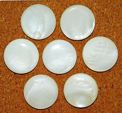 Antique Vintage Carved Large Shell Mother-of-Pearl Buttons SET of 7