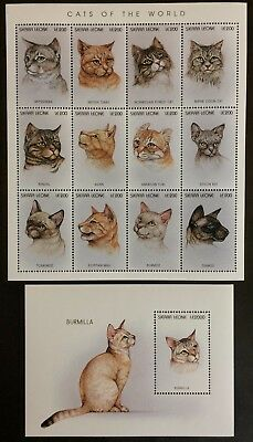 Sierra Leone 1996**Mi.Klb.2583-94,bl.300 Cats of the World MNH [16;102a][11;39]