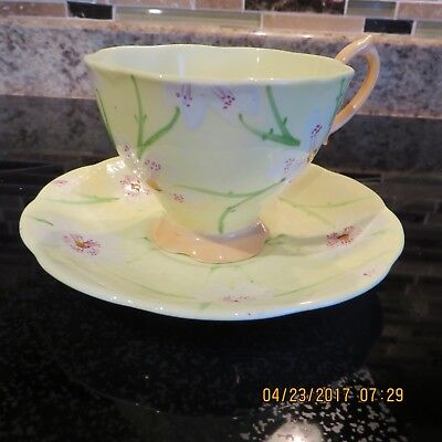 Royal Albert Teacup & Saucer Set ~ Hand Painted