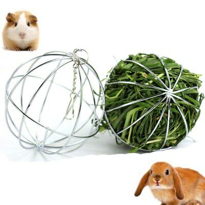 Small Animals Feeding Stainless Steel  Grass Ball Pet Hanging Ball Toy New
