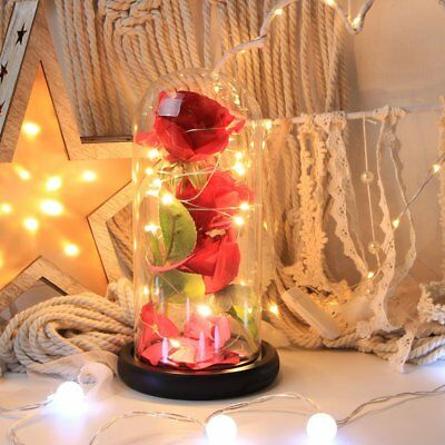 Enchanted Rose Glass Dome Beauty And The Beast LED Light Wedding Decor Gift Girl