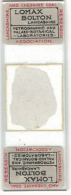 Antique Microscope Slide Geological Lomax