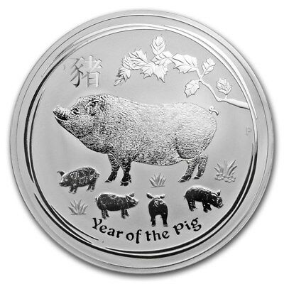 2019 ~ KILO ~.9999 SILVER ~ LUNAR YEAR of the PIG ~ PERTH MINT ~CAPSULE~ $648.88