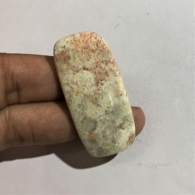 51.7 Cts 100% Natural Pink Fossil Coral Cab Top Quality Loose Gemstone L#946-40