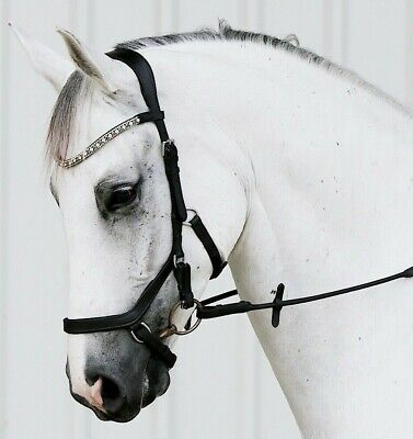 Lumiere 'Azure' micklem style bridle - FULL (NEW)