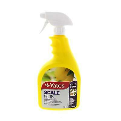 Scale Gun Ready To Use Insect Pest Killer Yates 50ml Scaple Aphids Caterpillars