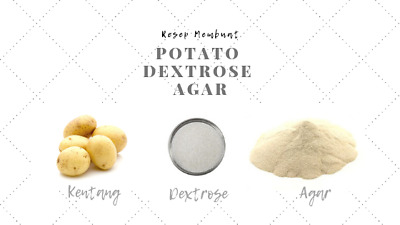 POTATO DEXTROSE AGAR POWDER 100g