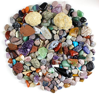 Dancing Bear Rock & Mineral Collection Activity Kit Over 150 Pcs, Educational 2
