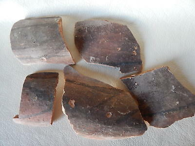 Neolithic Pottery Shards #10. Trypillian culture.
