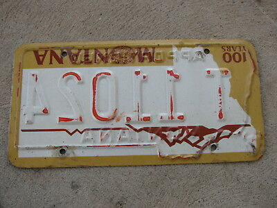 1989 Montana Apportioned License Plate T 11024 - reverse stamped