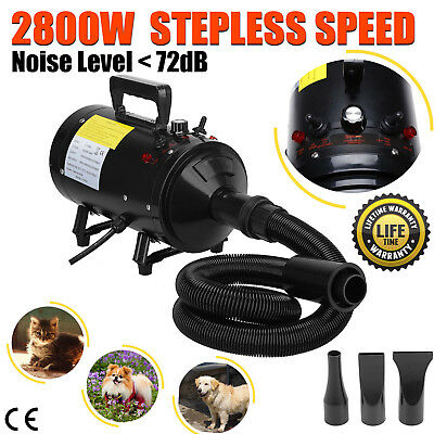 Pet Dog Hair Dryer Grooming Fur Stepless Speed Heater Blaster Hairdryer 2800W UK