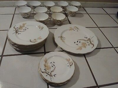 28 Piece Colclough Bone China set, Made in England Tea Cups and plates