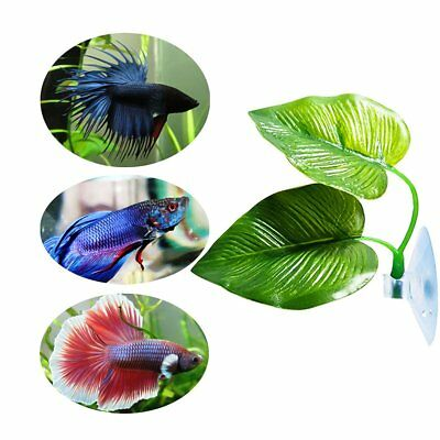 NEW Suction Double-Layered Ornamental Betta Fish Rest Spawning Leaf Decor