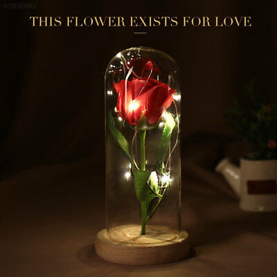 5A63 Glass Valentine'S Day Gift Rose Glass Cover Immortality Immortal Flower