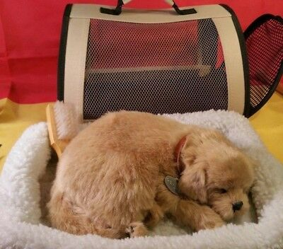 Perfect Petzzz Golden Retriever Breathing Puppy Sound Pet Carrier