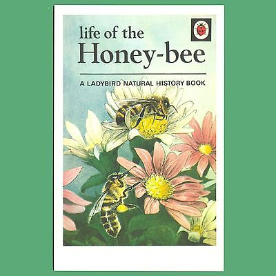 Life Of The Honey-bee A Ladybird Natural History Book - Cover Postcard