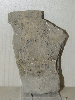 Antique Stone Fragment With Graffiti Symbols,drawings