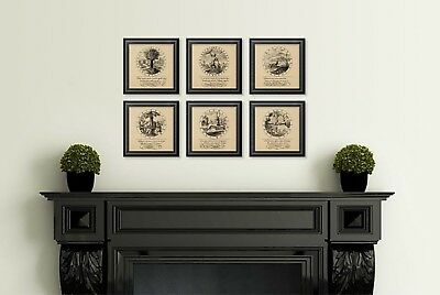 VINTAGE STYLE PRINTS set of 6 - wall art book page Alchemy Manuscrip Latin Text
