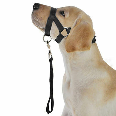 GN- Nylon Dog Muzzle Pet Head Collar Training Mouth Cage for Dogs M L XL XXL Fin