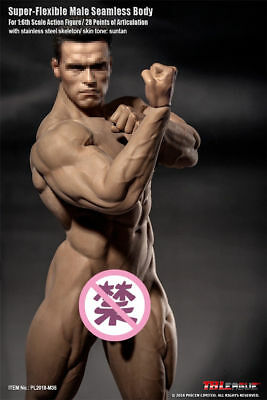 "1/6 Scale Super Flexible Male Seamless Body 12"" Figure TBLeague PL2018-M35"