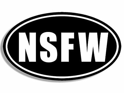 3x5 inch Oval NSFW Sticker (bumper funny car sexy dirty humor rude not for work)