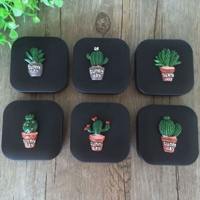 Washer Fruit Holder Container Cleaner Cactus Contact Lens Box Eyes Glasses Case
