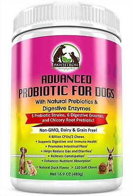 Advanced Probiotics for Dogs with Prebiotics + Digestive Enzymes