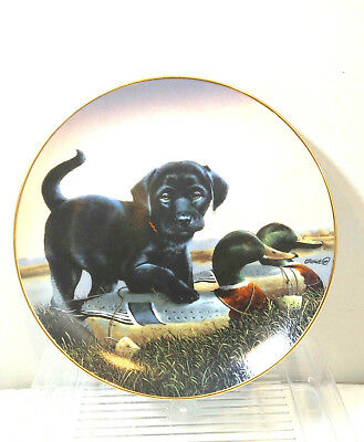 Danbury Mint 1992 Finder's Keepers Phillip Crowe Dog Plate Ltd Ed The Sportsmen