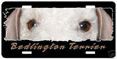 "Bedlington Terrier  "" The Eyes Have It "" License Plate"