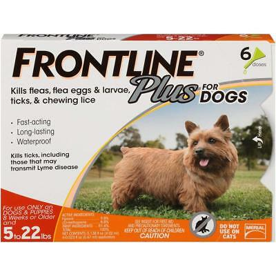 Frontline Plus for Dogs - Small Dog (5-22 pounds) - Flea and Tick Treatment, 6 D