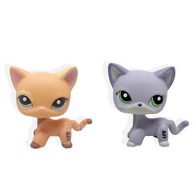 Rare LPS Littlest Pet Shop persan chat EUROPEEN LPS chat à poils courts #1116