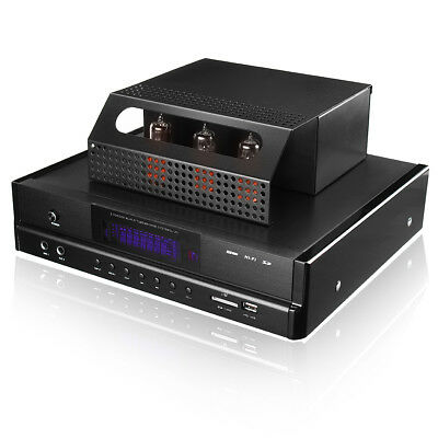 Bluetooth Tube Amplifier Subwoofer HiFi Power Stereo Music USB SD Microphone AU