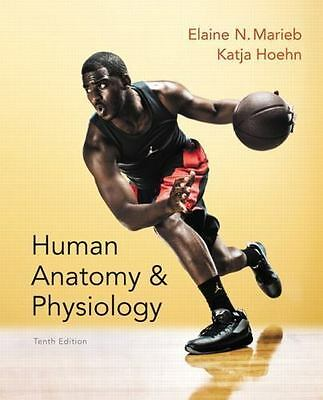 **PDF** Human Anatomy and Physiology Marieb 10th Edition (E-b00k)